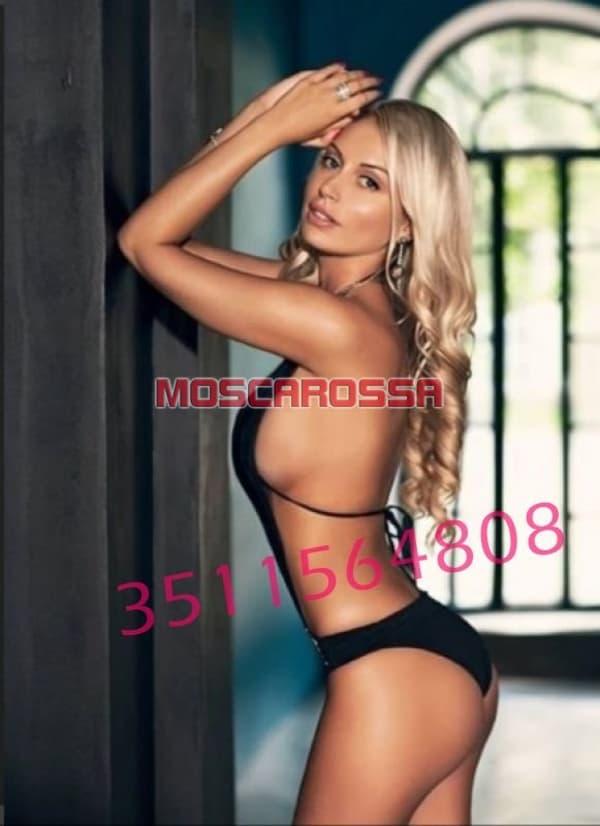 3511564808